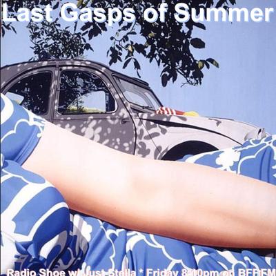 Last Gasp of Summer Shoe