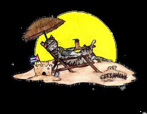 Alley Cat en Cuba (Episode 13)