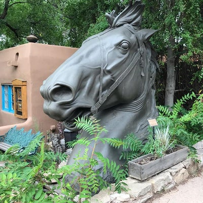 PR110 - Giant Horse Head