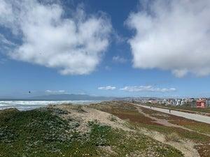 coastal climate radio - sampha, jackson lundy, surf mesa, remi wolf