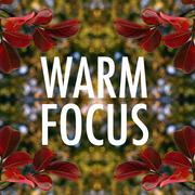Warm Focus
