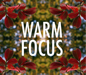 Farewell to Warm Focus on The Atlantic