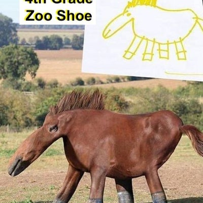 4th Grade Zoo Shoe