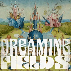 Dreaming Fields' Top 5 Albums of 2019