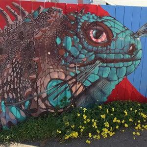 PR129 - Iguana Fence