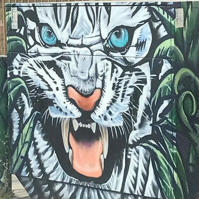 PR104 - White Tiger